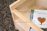 Vidoeiro de madeira moderno Nightstands folheado com uma gaveta (N1022)