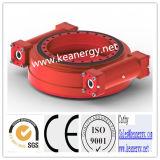 ISO9001/Ce/SGS zwenkt de Dubbele Worm Aandrijving voor de Machines van de Bouw