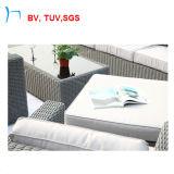 Tuv-im Freien Rattan-Möbel-Patio-Stuhl und Garten-Sofa-Set