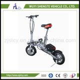 電気スクーターのバランスをとっている12インチの自己の熱販売