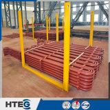 O ISO de China Certificate o tipo vertical Superheater da caldeira da central energética