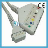 Cable del tronco de Holter ECG del terminal de componente de Burdick 7