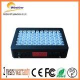 300W Factroyの価格LEDは屋内プラントHydroponicsのために軽く育つ