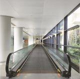 Somme-Ascenseur d'intérieur de promenades mobiles d'ascenseur mobile de trottoir