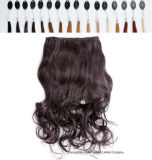 Hair Extension 220 Grams에 있는 두 배 Drawn Remy Clip