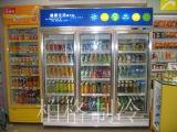 Typen Supermarkt-Nacjbarschaftsladen-Weg in der Kühlvorrichtung zusammenbauen