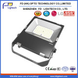 極めて薄いStreamlined Design Meanwell Driver 80W 100W 150W 200W IP65 LED Floodlight