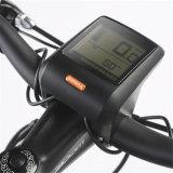 Bike города Горяч-Сбывания 36V250W Btn электрический с высоким качеством