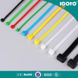 Plástico dos prendedores e cinta plástica coloridos do nylon