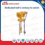 Élévateur de levage pneumatique d'air de cargaison d'élévateur à chaînes