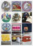Einzelne Farben-Stickerei-Maschinen-Preistajima-Entwürfe des Kopf-12