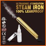 Steampod日本の平らな鉄(V179)をまっすぐにする専門の陶磁器の冷たい蒸気の毛