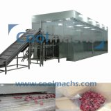 Quick Freezing Green Bean Vegetable et Fruit Flow Type IQF Tunnel Congélateur