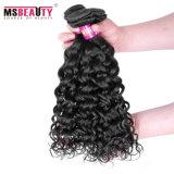 Cabelo não processado do Virgin do Indian do Weave 100% do cabelo humano
