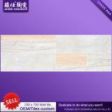 Поставщик 250&times Китая; плитка стены плитки пола и стены Inkjet 750 3D керамическая