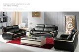 Wohnzimmer-Sofa mit modernem echtes Leder-Sofa-Set