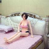 小型性の人形の日本性の人形のインドの性の人形