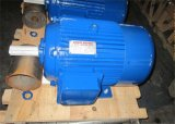 Мотор индукции двигателя генератора y