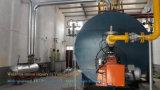 Caldeira de vapor 2ton despedida gás do fabricante da B-Classe com grande preço