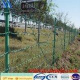 Filo galvanizzato del singolo filo (XA-BW014)