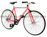 Высокий растяжимый фикчированный велосипед Sy-Fx70008 Bike шестерни