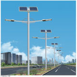 luzes de rua solares do braço 20W-100W dobro