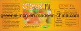 Comprimidos Slimming máximos do queimador gordo apto do citrino