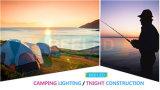 フラッシュ紫系統そして白い10W携帯用再充電可能なLEDのフラッドライト
