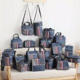 De koelere Handtassen van de Zak van de Thermische Isolatie van de Zak voor Lunch 10419 van de Picknick