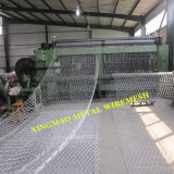 Поставщик Китая усиленной стены Gabion/шестиугольного Wiremesh Gabion почвы сохраняя (XM-013)
