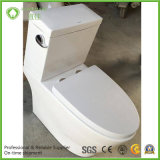 Южная Америка Siphonic 2 хорошего качества части туалета Wc