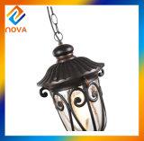 Lampe pendante en aluminium de cru européen simple de type pour le projet