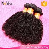 Tresses en gros de crochet de cheveu d'usine avec les cheveux humains