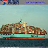 Logística do transporte/serviço de transporte/remetente de frete de China a no mundo inteiro