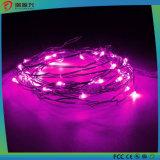 Luzes de piscamento da corda do diodo emissor de luz de Blinky