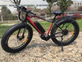 Heißes Selling MID Drive Motor Electric Bicycle mit FAT Tire