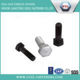 HDG-strukturelle Schraube (/A325/A490)