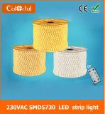 Luz de tira impermeável do diodo emissor de luz de RoHS AC220V SMD5730 do Ce