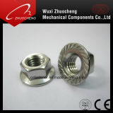 탄소 강철 직류 전기를 통한 톱니 모양으로 한 육 플랜지 견과 DIN6923