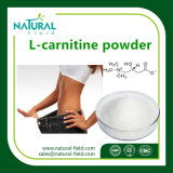 Poudre de L-Carnitine de matière première de poids de perte/CAS : 5080-50-2