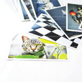 Печатание открытки словесности и ландшафта искусствоа (с габаритом)