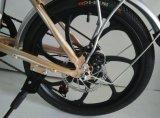 Bike города Myatu электрический складывая с батареей льва