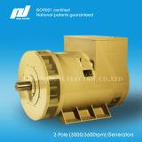 2-полюсный бесщеточный генератора переменного тока 50 / 60Гц (3000 / 3600rpm)