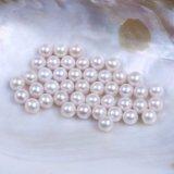 Perla de agua dulce redonda suelta perla