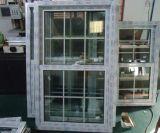 Doppeltes hing Fenster mit Gitter-Entwurf