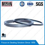 Anzeigen-Typ Schaber-Scheuerschutz des Verschleißfestigkeit-Hydrozylinder-Rubber/PTFE