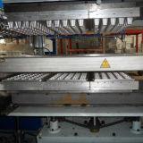 Bandeja plástica del huevo de Disposale que hace y que forma la máquina