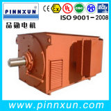 O 6kv Squirrel Cage Three-Phase Asynchronous Motor 2500kw