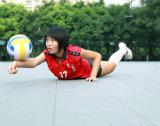 Étage modulaire de volleyball de Nicecourt pour l'usage de Cummunity, résidentiel et de stationnement