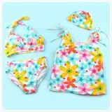 Het Pak Swimwear van de familie (YD10031)